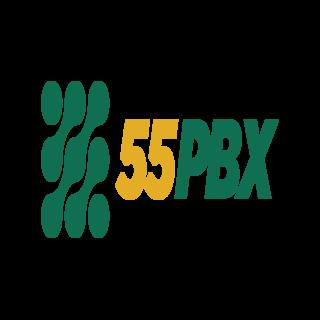 55PBX PABX Virtual Resumo de Ligação